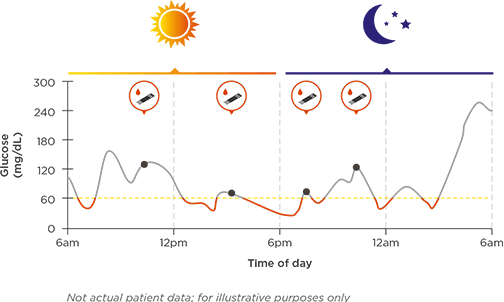 Image shows chart of glucose levels throughout the day and night.